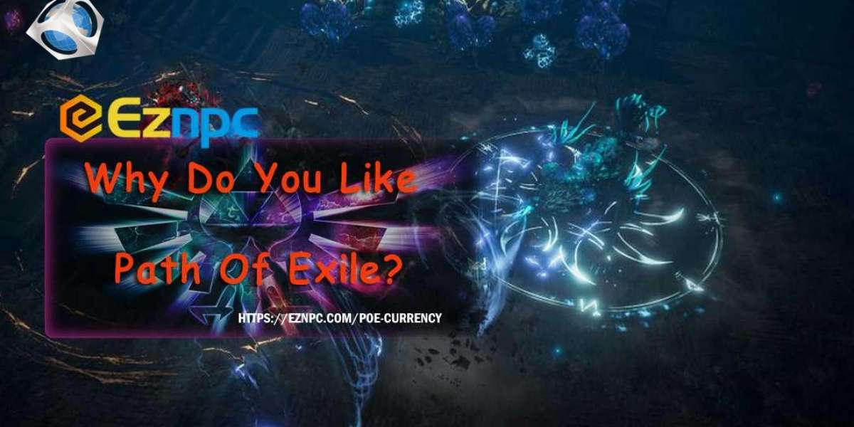 Why Do You Like Path Of Exile?