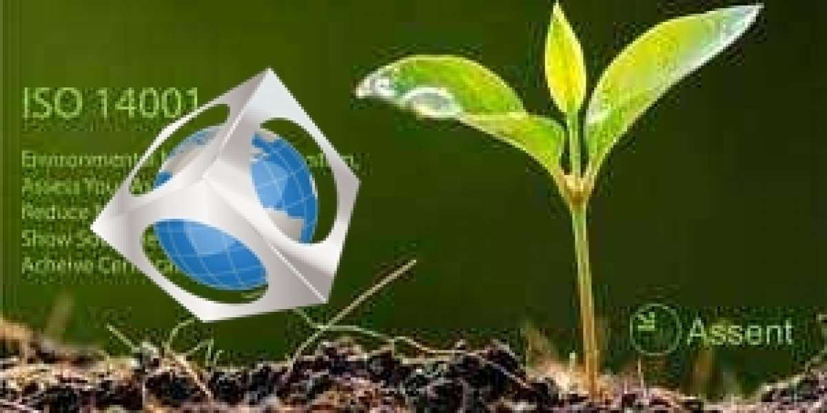 Five Reasons why ISO 14001 Certification is Important for organizations in Oman?