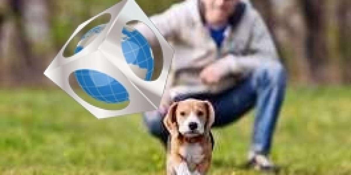Let's Get Deep Inside Pet Friendly Rehabs Near Me Online