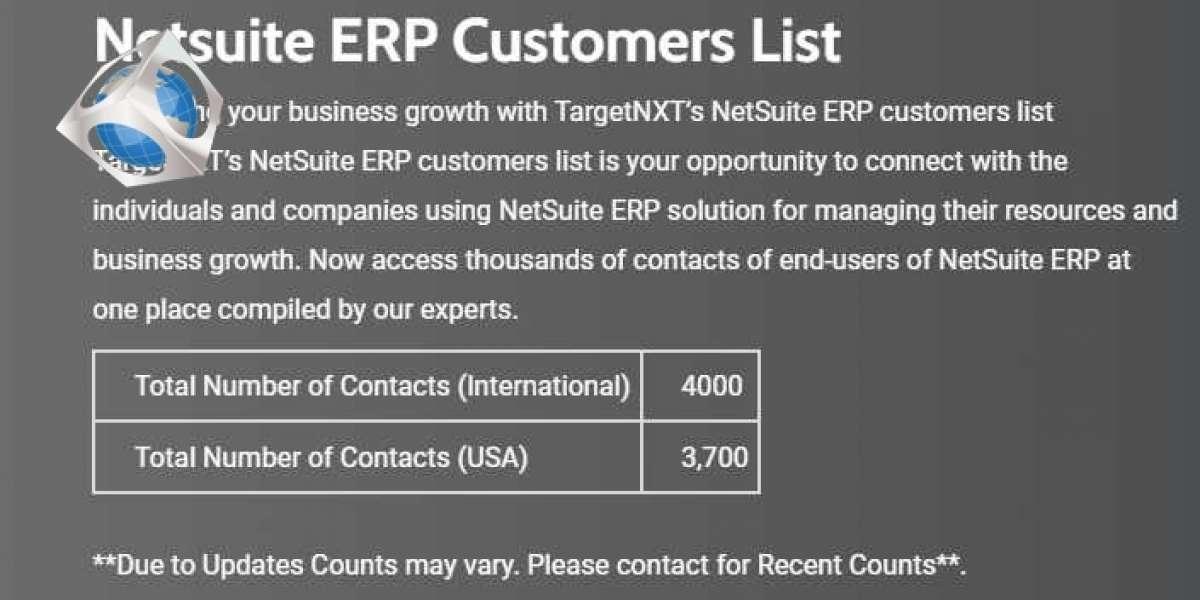 Netsuite ERP Customers List