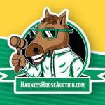 Harness Horse Auction Profile Picture