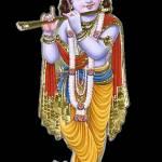 Vasudeva Dikshith Profile Picture