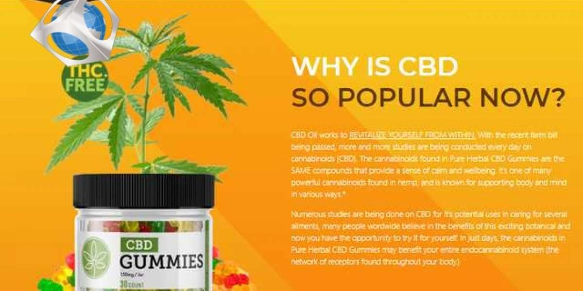 Things You Most Likely Didn't Know About Danny Koker CBD Gummies.