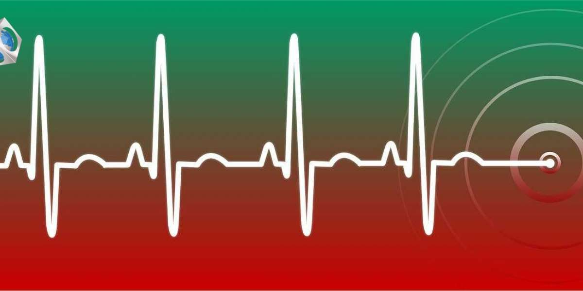 Global Electrocardiograph (ECG) Market Research | Key Companies Profile with Sales, Revenue and Competitive Situation An