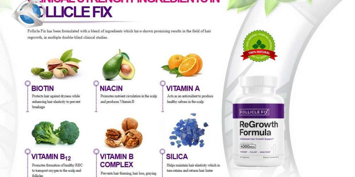 Follicle Fix Regrowth Formula Reviews: Real Benefits Or Cheap Ingredients!
