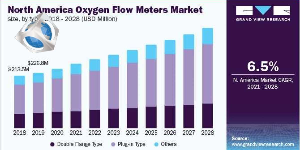 Oxygen Flow Meters Market - Future Trends, Revenue Growth & Leading Players, Forecast To 2028