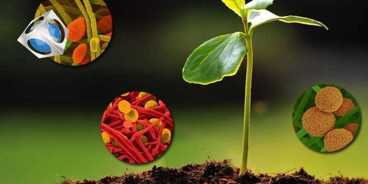 Biostimulants Market: Industry Analysis and Forecast (2020-2026)